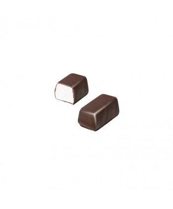FINI BOCADITOS CHOCOLATE CON LECHE BOTE 100UN.